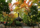 Autumn in Suzhou