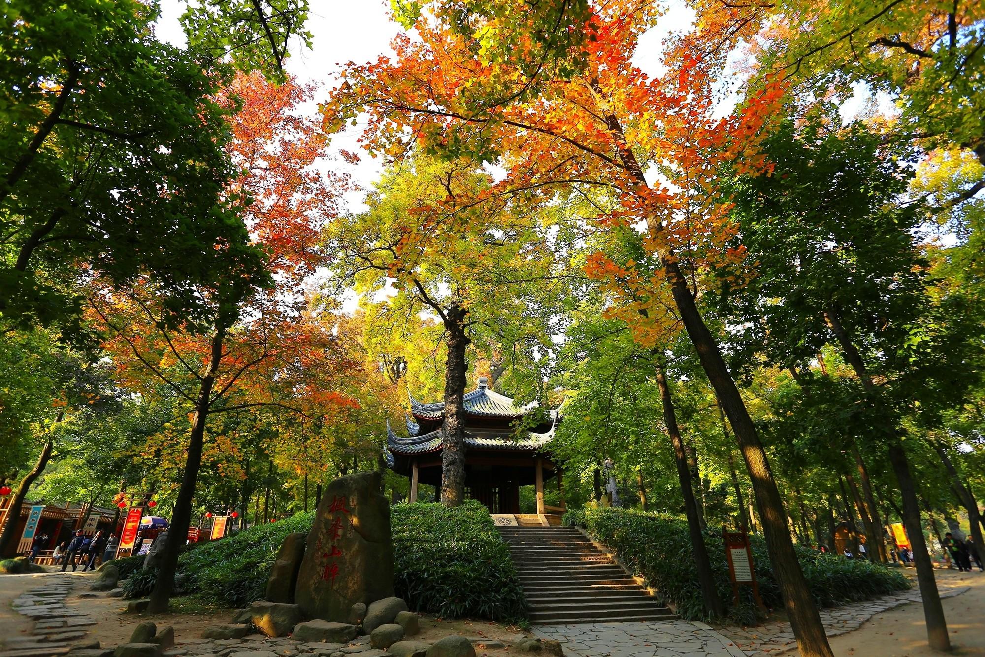 Autumn in Suzhou